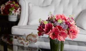 Комнатные растения в интерьере квартиры – интересные варианты оформления (55 фото): роль искусственных цветов