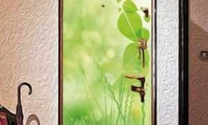 Наклейки на двери (29 фото): наклейки на входные и межкомнатные двери комнат, варианты для ванной и туалета, стеклянные и виниловые изделия