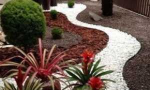 Садовые дорожки (129 фото): универсальные варианты оформления дорожек на даче