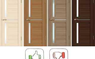 Двери из экошпона (46 фото): что это такое, плюсы и минусы межкомнатных изделий из экошпона, отзывы покупателей