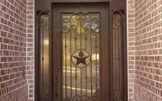 Металлические двери со стеклом (26 фото): входные и межкомнатные, железная дверь с ковкой и остеклением, двойные остекленные модели