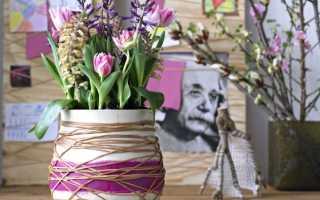 Идеи для украшения дома своими руками (74 фото): интересные и креативные задумки для уюта