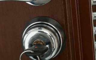 Стальные входные двери (42 фото): как выбрать модель с терморазрывом в квартиру, стальной профиль для дверей с зеркалом