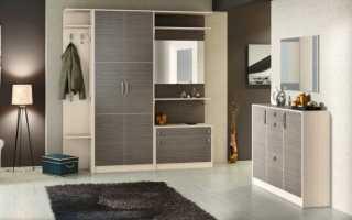 Стильные шкафы (61 фото): самые красивые и модные варианты в спальню и прихожую для одежды