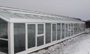 Парник стекло: стеклянный вариант для дачи, конструкция из стеклопакетов