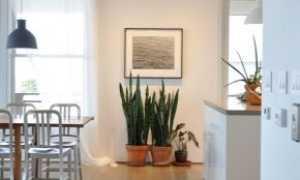 Встраиваемые потолочные споты: как встроить стену двойные поворотные светильники