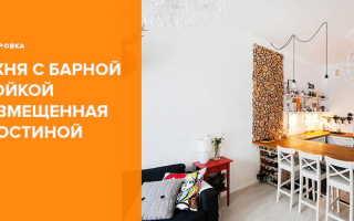 Арка между кухней и гостиной (59 фото): дизайн барной стойки