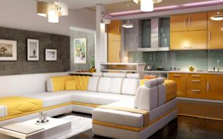 Дизайн кухни-студии: 20 фото