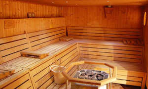Вагонка для бани – осиновая, конструкции из липы, ольхи и осины