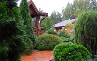 Ландшафтный дизайн участка с коттеджем (56 фото): красивые варианты планировки