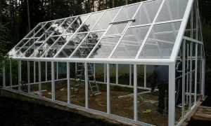 Теплицы из стекла: стеклянные конструкции своими руками