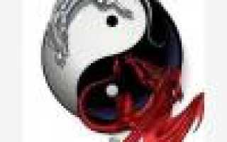 Кухонные весы Tefal: электронные бытовые Optiss Easy, отзывы