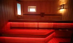 Светильники для бани в парилку (64 фото): как правильно сделать освещение, использование светодиодных ламп