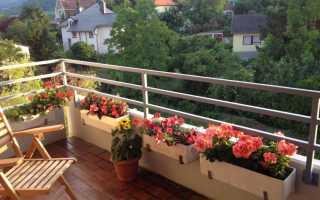 Дизайн с цветами на балконе (45 фото): оформление цветочного балкона своими руками на солнечной стороне